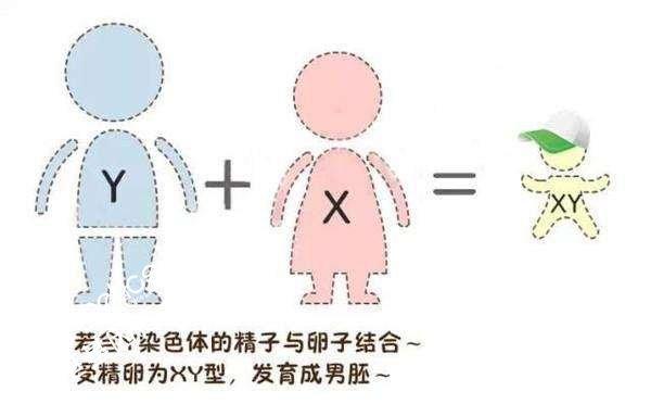香港验血邮寄样本准确率一样吗?
